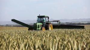 Tracteur dans champs monde agricole