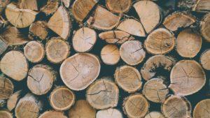 Biomasse bois énergie
